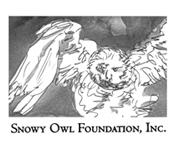 Snowy Owl Foundation logo